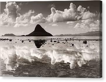 Mokolii Reflections Canvas Print by Sean Davey