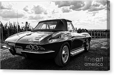 Vintage Corvette Sting Ray Black And White Canvas Print by Edward Fielding