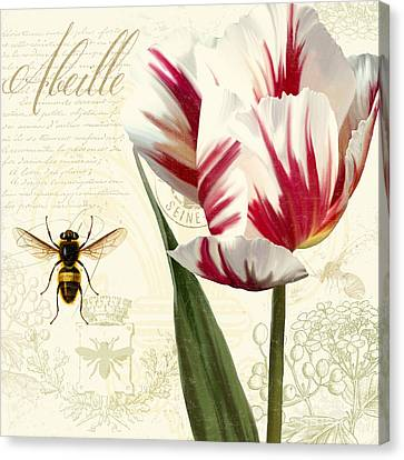 Vintage Elements Botanical Study, Tulip Bumble Bee Canvas Print by Tina Lavoie