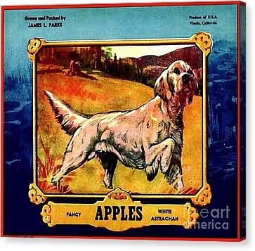 Vintage English Setter Apples Advertisement Canvas Print by Peter Gumaer Ogden