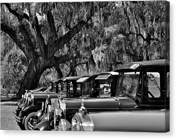 Vintage Ford Line-up At Magnolia Plantation - Charleston Sc Canvas Print