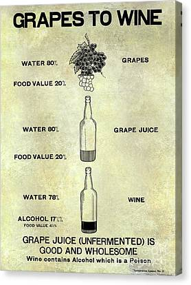 Vintage Grape To Wine Chart Canvas Print