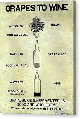 Napa Canvas Print - Vintage Grape To Wine Chart by Jon Neidert