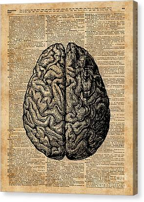 Vintage Human Anatomy Brain Illustration Dictionary Book Page Art Canvas Print by Jacob Kuch