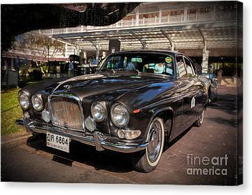 Vintage Jaguar Canvas Print by Adrian Evans
