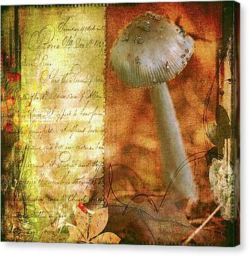 Vintage Nature Journal Page  Canvas Print by Bellesouth Studio