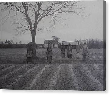 Vintage Photograph 1902 New Bern North Carolina Sharecroppers Canvas Print by Virginia Coyle