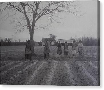 Vintage Photograph 1902 New Bern North Carolina Sharecroppers Canvas Print