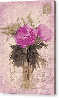Vintage Pink Peonies Canvas Print by Karen Lewis