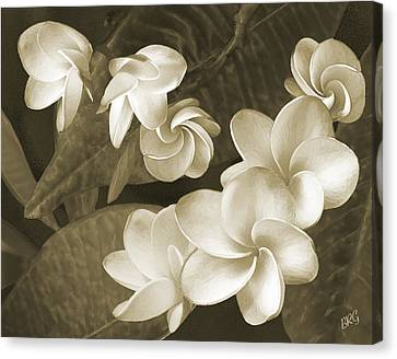 Canvas Print featuring the photograph Vintage Plumeria by Ben and Raisa Gertsberg
