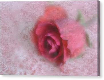 Canvas Print featuring the photograph Vintage Red Rose by Diane Alexander