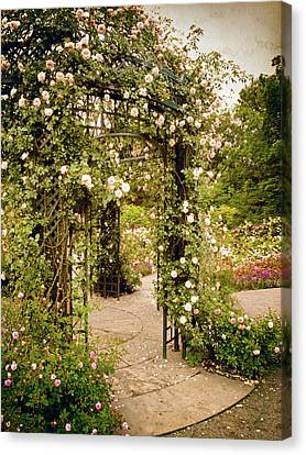 Vintage Rose Arbor Canvas Print by Jessica Jenney