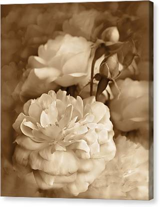 Vintage Roses Bouquet In Sepia Canvas Print