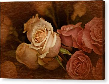 Canvas Print featuring the photograph Vintage Roses March 2017 by Richard Cummings