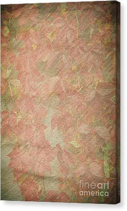 Vintage Silk Cotton Leaves Texture Canvas Print by Arletta Cwalina