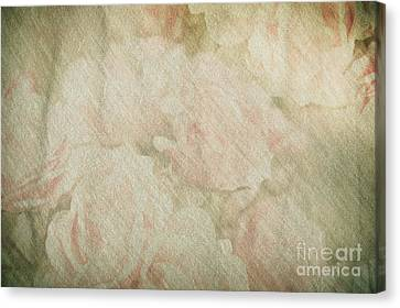 Vintage Silk Cotton Roses Texture Canvas Print by Arletta Cwalina