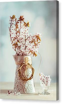 Vintage Spring Blossom Canvas Print