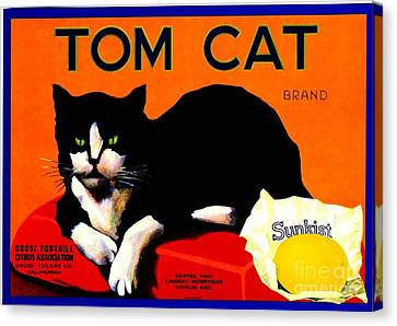 Vintage Sunkist Tom Cat Canvas Print
