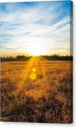 Vintage Sunset Canvas Print by Shelby Young