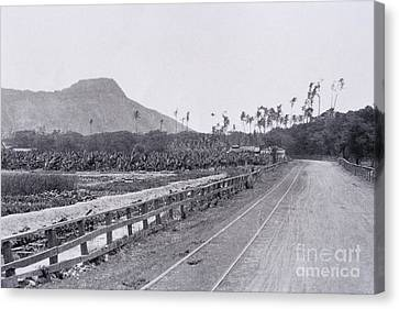 Diamond Head Canvas Print - Vintage Waikiki by Hawaiian Legacy Archive - Printscapes