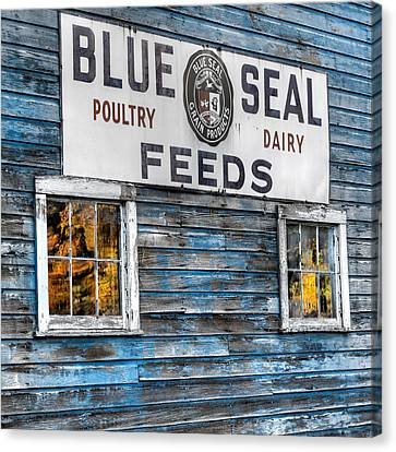 Vintage Feed Sign Canvas Print by Bill Wakeley