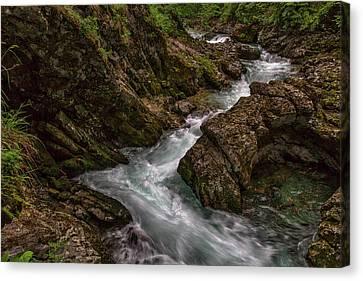 Canvas Print featuring the photograph Vintgar Gorge Rapids - Slovenia by Stuart Litoff