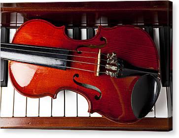 Viola On Piano Keys Canvas Print by Garry Gay