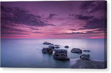 Violet Skies Canvas Print