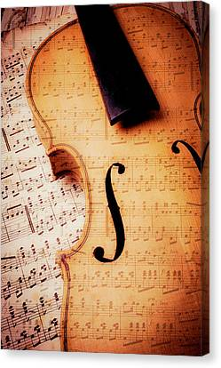 Violin And Musical Notes Canvas Print by Garry Gay