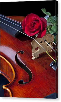 Violin And Red Rose Canvas Print by M K  Miller