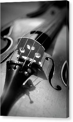 Violin Canvas Print by Danielle Donders - Mothership Photography