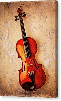 Violin Dreams Canvas Print by Garry Gay