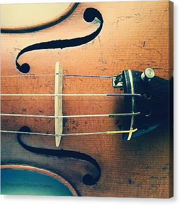 The Violin Canvas Print by Steven Digman
