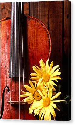 Violin With Daises  Canvas Print