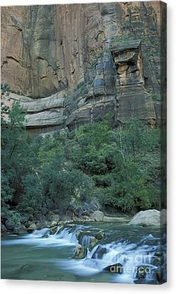 Virgin River In Zion 1 Canvas Print by Stan and Anne Foster