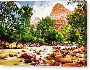 Virgin River In Zion National Park - Utah Usa Canvas Print by Susan Schmitz
