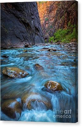 Zion National Park Canvas Print - Virgin River Rocks by Inge Johnsson