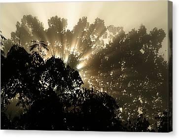 Virginia Sunrise Canvas Print