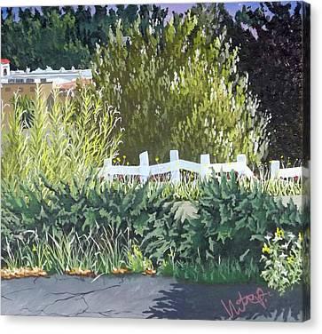 Bamboo Fence Canvas Print - Vista California by Hector Perez
