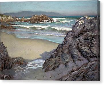 Voelklip Beach Canvas Print by Christopher Reid