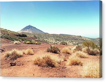 Volcan Teide Valley Canvas Print
