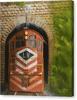 Vosburg Tunnel Canvas Print by Christopher Jenkins
