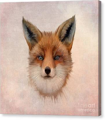 Vulpes Vulpes Canvas Print by John Edwards