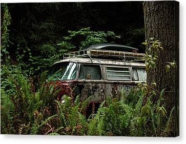 Vw Hides In The Woods Canvas Print