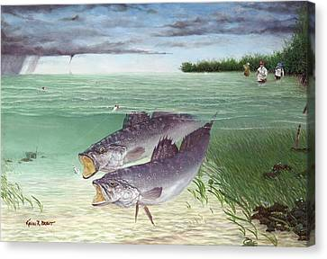 Wade Fishing For Speckled Trout Canvas Print by Kevin Brant