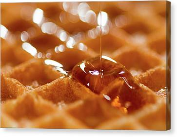 Waffles Canvas Print by Happy Home Artistry