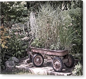 Wagon Canvas Print - Wagon In Garden by Melissa Smith
