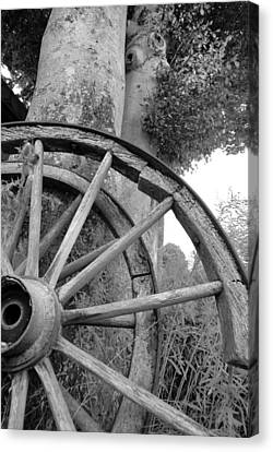 Wagon Wheels Canvas Print by Robert Lacy