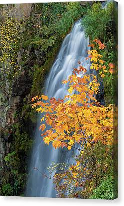 Wah Gwin Gwin Falls In Autumn Canvas Print by David Gn