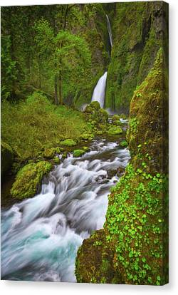 Canvas Print featuring the photograph Wahclella Falls by Darren White